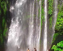 See waterfalls in Senaru Best lombok waterfalls tour