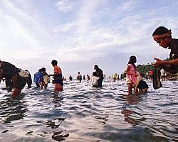 Catching Nyale sea worms during Bau Nyale festival in Lombok