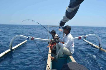 lombok-fishing