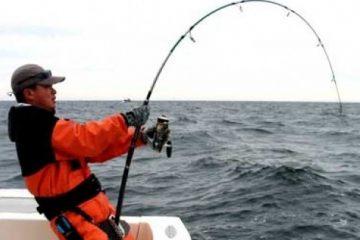 best deep sea sport fishing