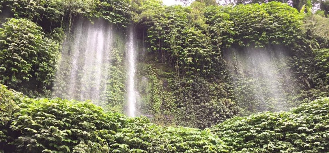 lombok waterfall great panoramic view